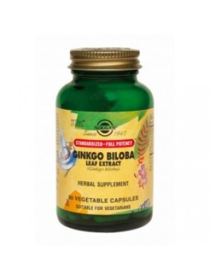 GINKGO BILOBA EXTRACT 60 capsules